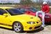 Yellow 04 GTO